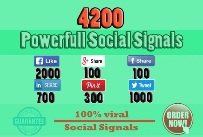 build 4200 SEO signals,social media campaign