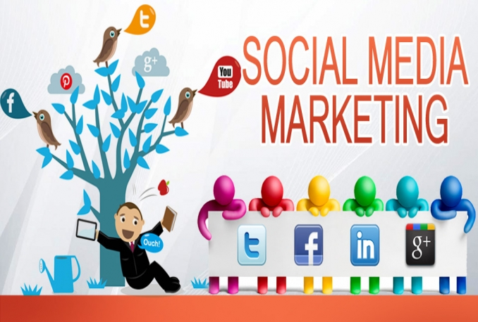 do social media marketing within my 7M USA and Europe Facebook Twitter followers