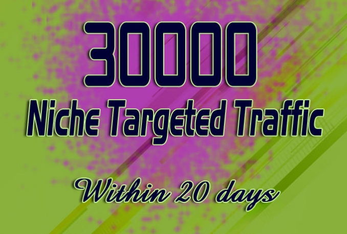 drive unlimited Niche targeted website, traffic, visitors for 20 days