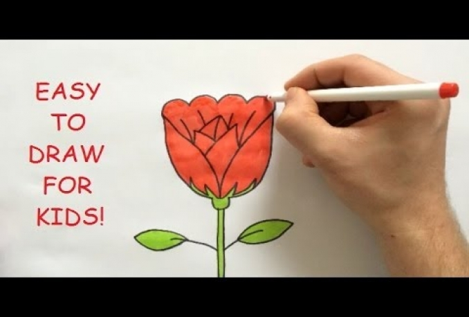 teach how to draw a Rose