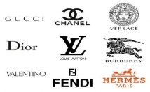 design a PROFESSIONAL logo for your Brand