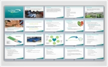 design professional PowerPoint presentations for Business and Academic use