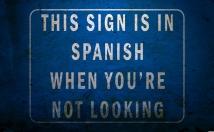 translate English to Spanish 500 words