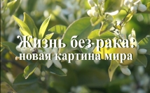 add subtitles in Russian or English to your video
