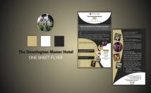 create a professional one sheet in 24 hour